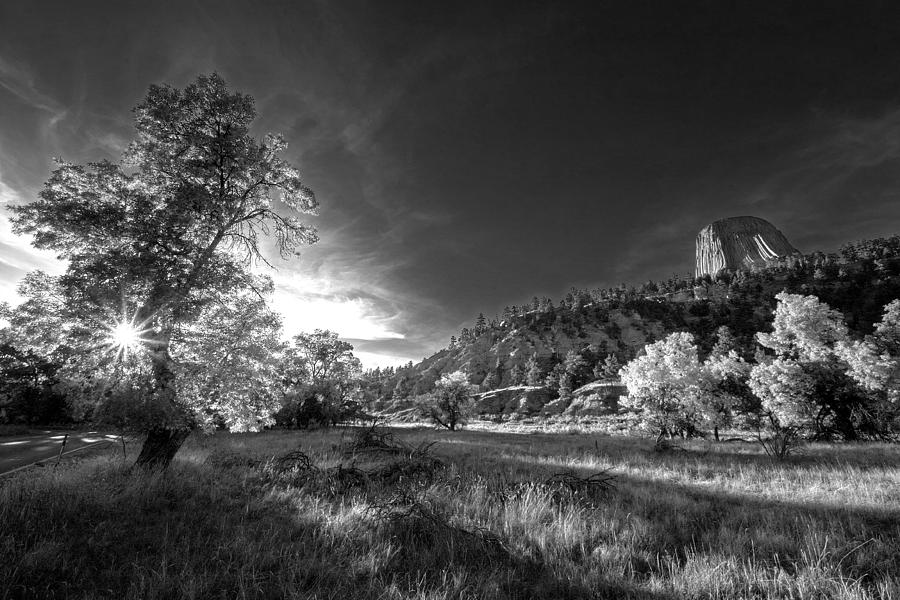 Devils Tower- Black And White Photograph