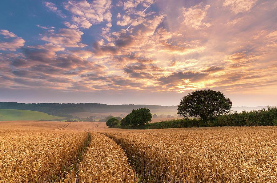 Devon Sunrise, England Photograph by John Finney Photography