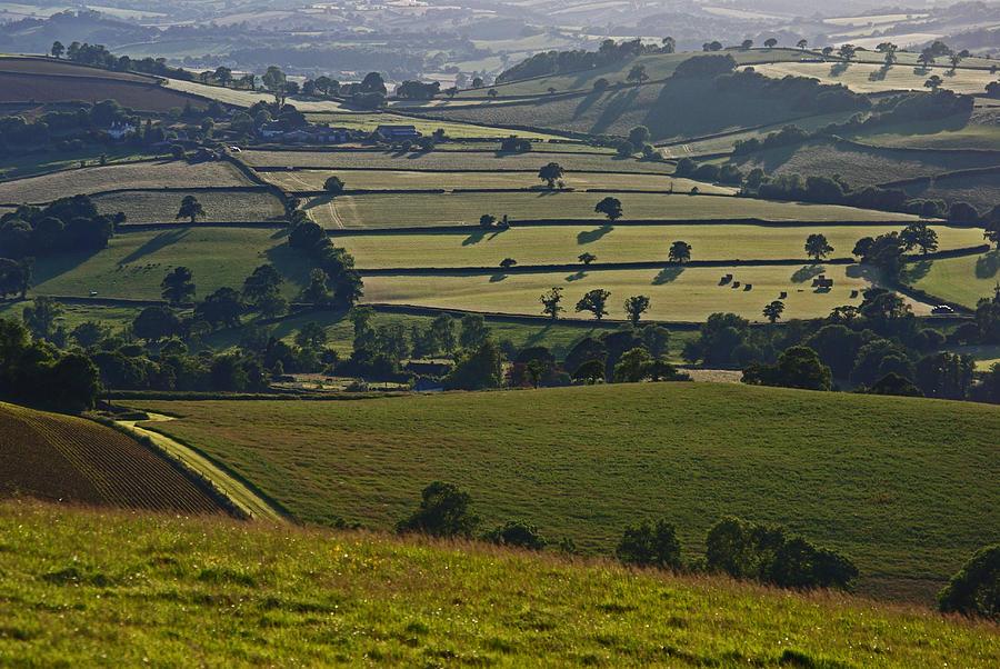 Devon Photograph - Devonian Tapestry Of Fields by Pete Hemington