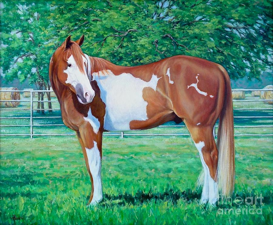 Horse Painting - Diamond of Riverview Ranch by Vickie Fears
