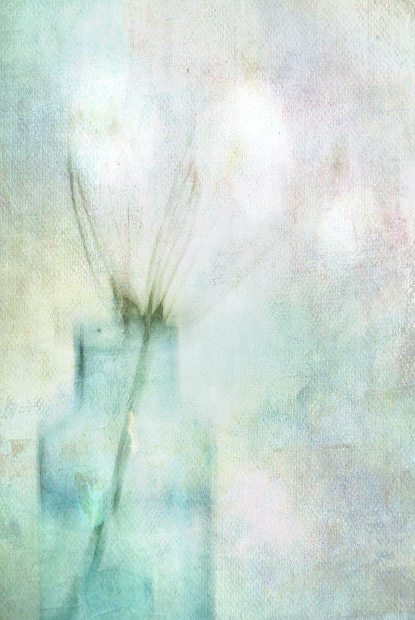 Abstract Photograph - Different by Annie Snel