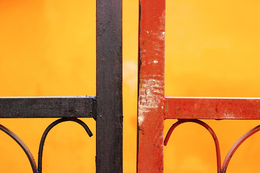 Metal Gate Photograph - Different Yet Similar by Prakash Ghai