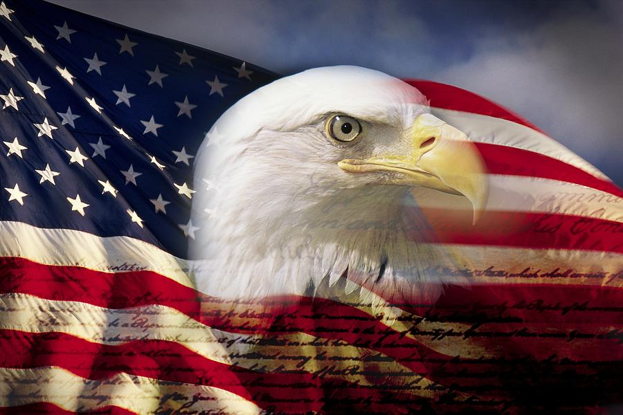 Digital composite: American bald eagle and flag is underlaid with the handwriting of the US Constitution Photograph by VisionsofAmerica/Joe Sohm