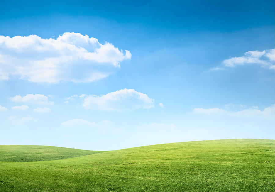 Digital Composition Of Green Meadow And Blue Sky Photograph by Spooh