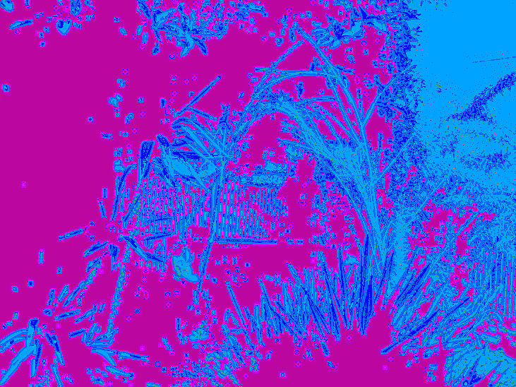 Paint Digital Art - Digital Visual by HollyWood Creation By linda zanini