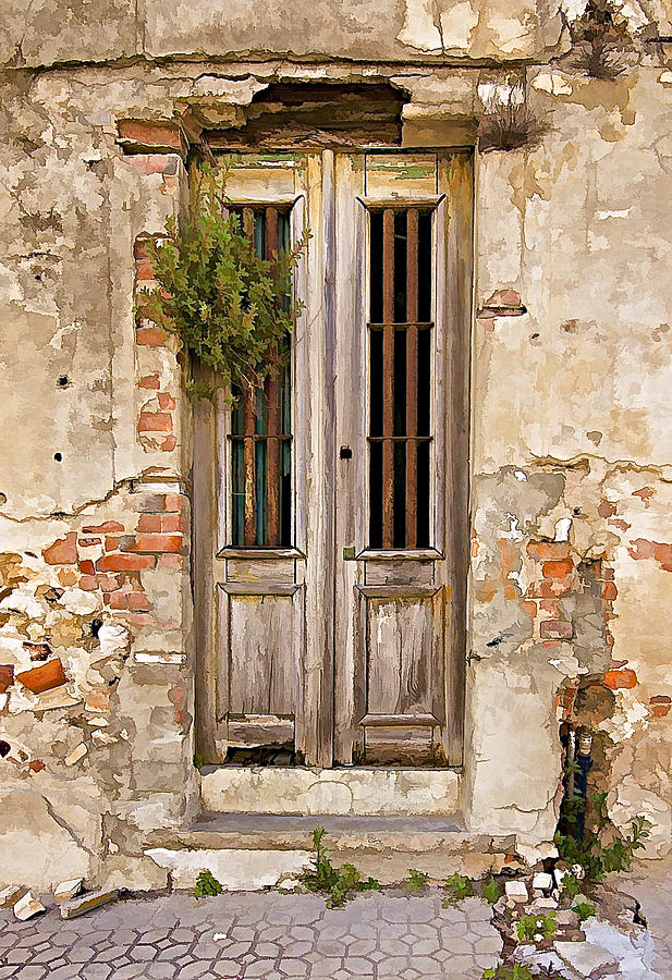Brick Photograph - Dilapidated Brown Wood Door Of Portugal by David Letts