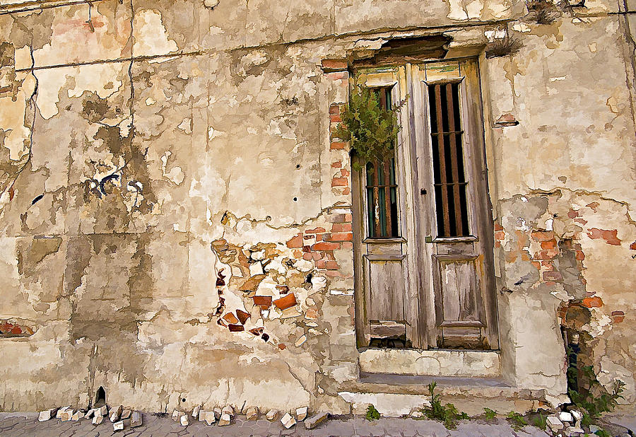 Abandon Photograph - Dilapidated Brown Wood Door Of Portugal II by David Letts