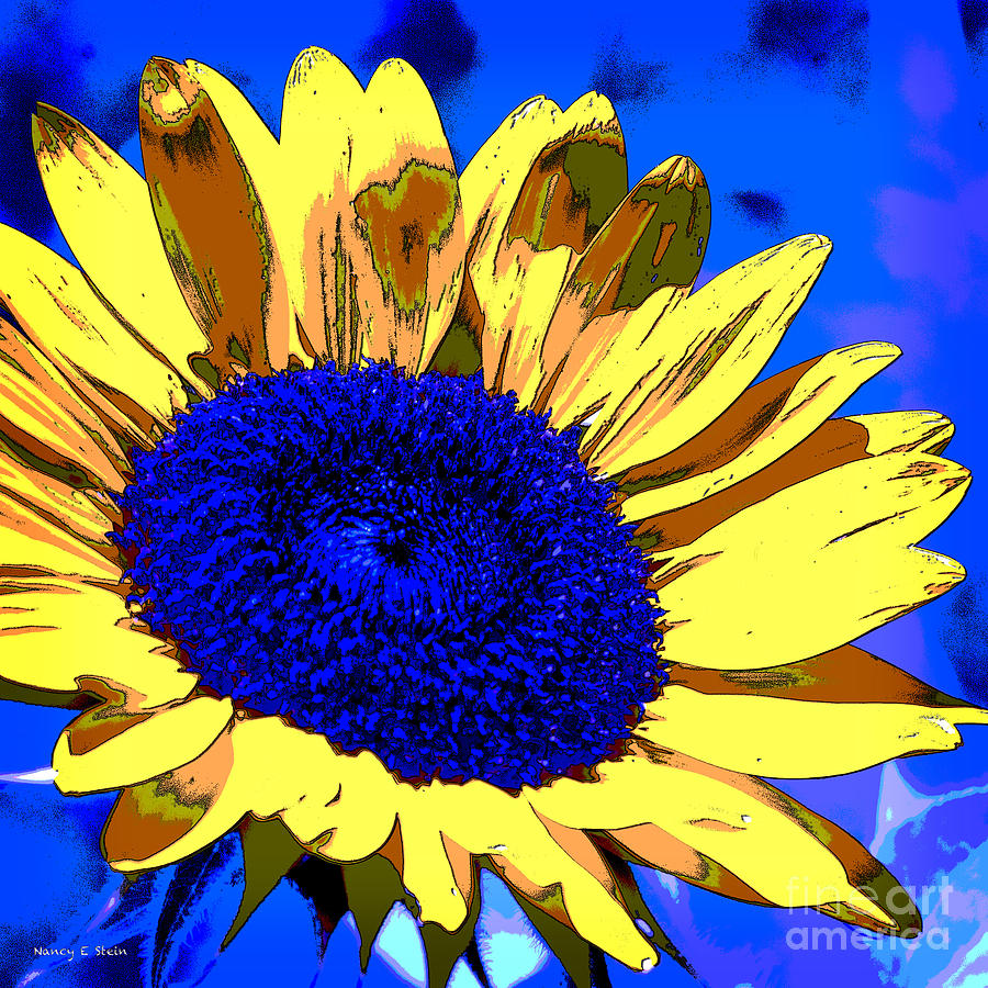 Dimensional Sunflower Photograph