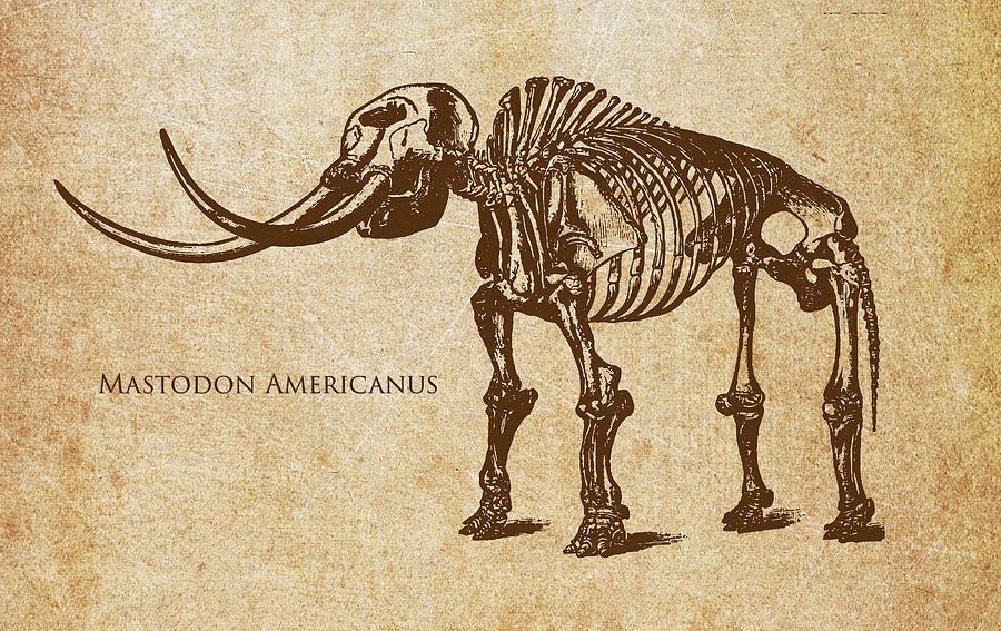 Dinosaur Mastodon Americanus Digital Art