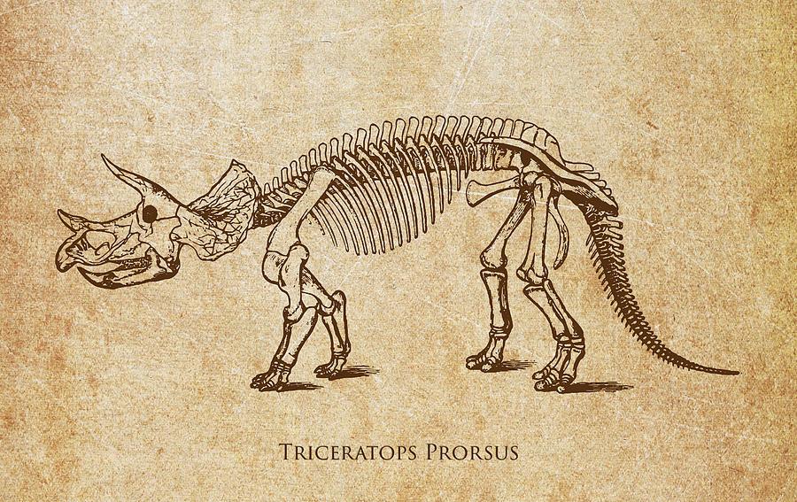 Dinosaur Triceratops Prorsus Digital Art