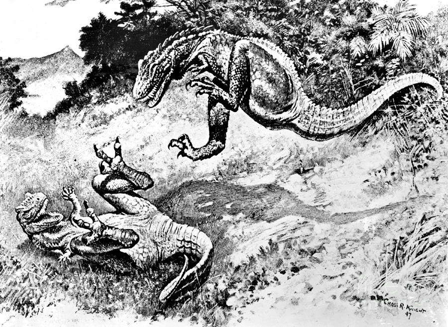 Dinosaur Photograph - Dinosaurs Fighting by Science Source