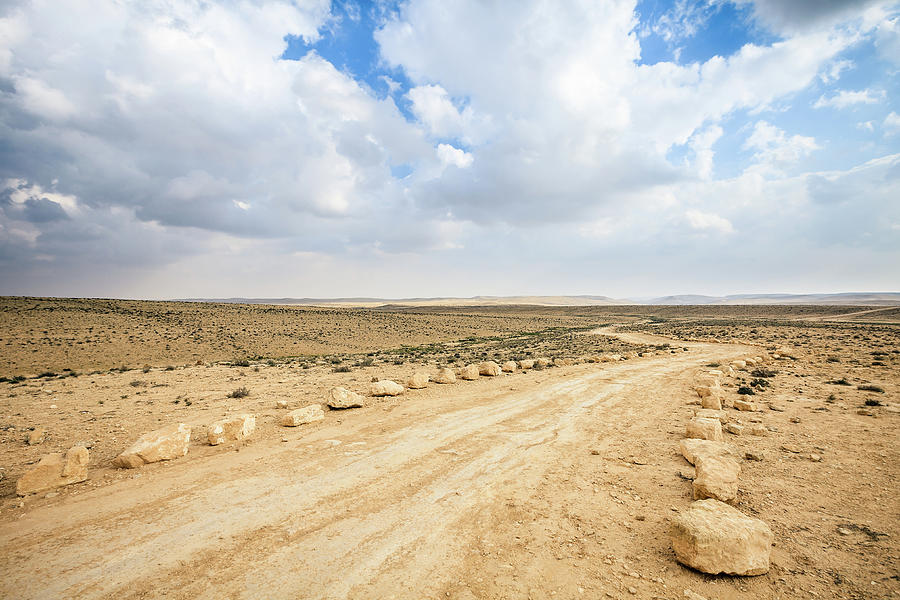 Dirt Track Photograph by Fredfroese
