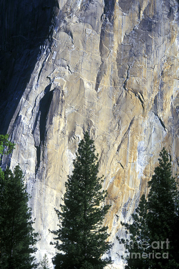 El Capitan Photograph - Disappearing Into The Wall by Paul W Faust -  Impressions of Light