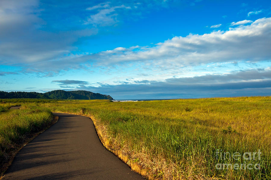 Pacific Ocean Photograph - Discovery Trail by Robert Bales