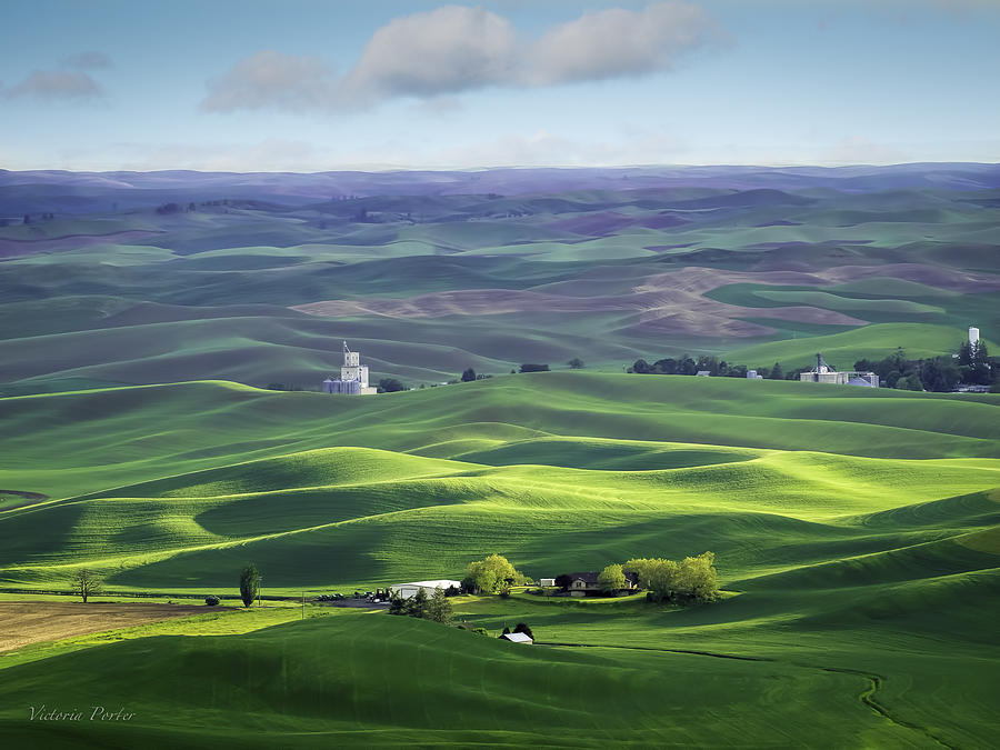 Distant Vista from Steptoe Butte by Victoria Porter