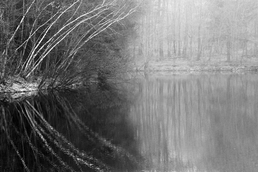 Lake Photograph - Divided By Nature Bw by Karol Livote
