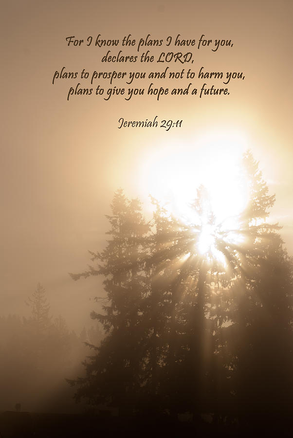 Jeremiah 29:11 Photograph - Do Not Be Afraid by Jani Freimann