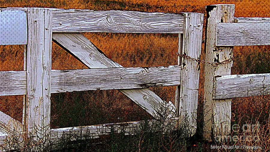 Gates Photograph - Do Not Enter by Bobbee Rickard