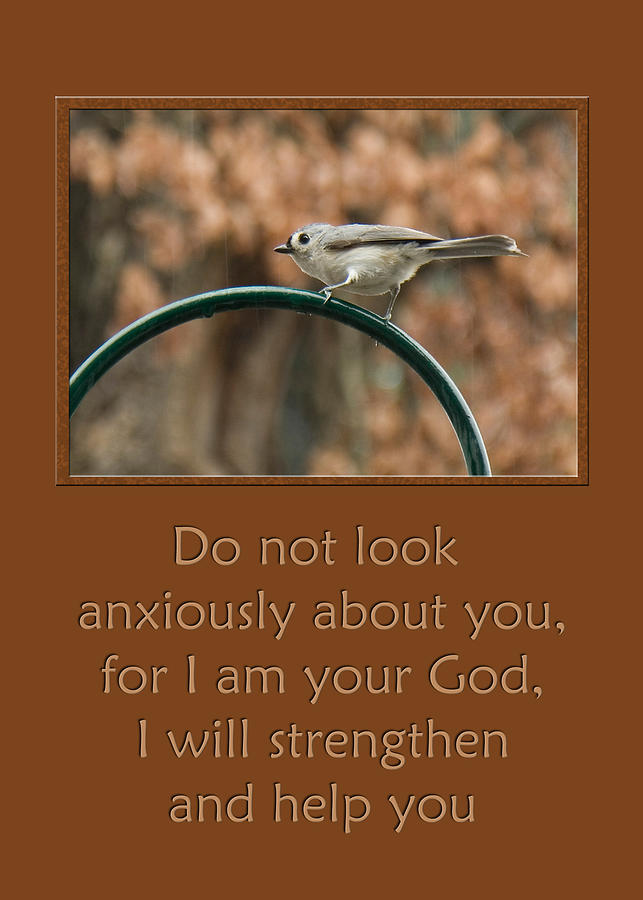 Isaiah 41:10 Photograph - Do Not Look Anxiously About You by Denise Beverly