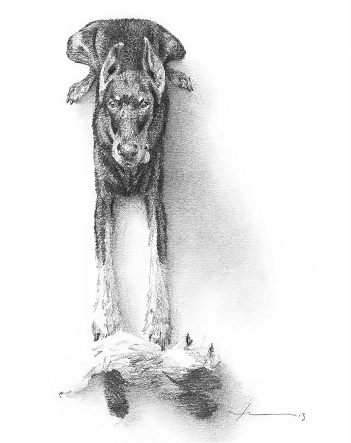 Doberman Puppy Pencil Portrait Drawing by Mike Theuer