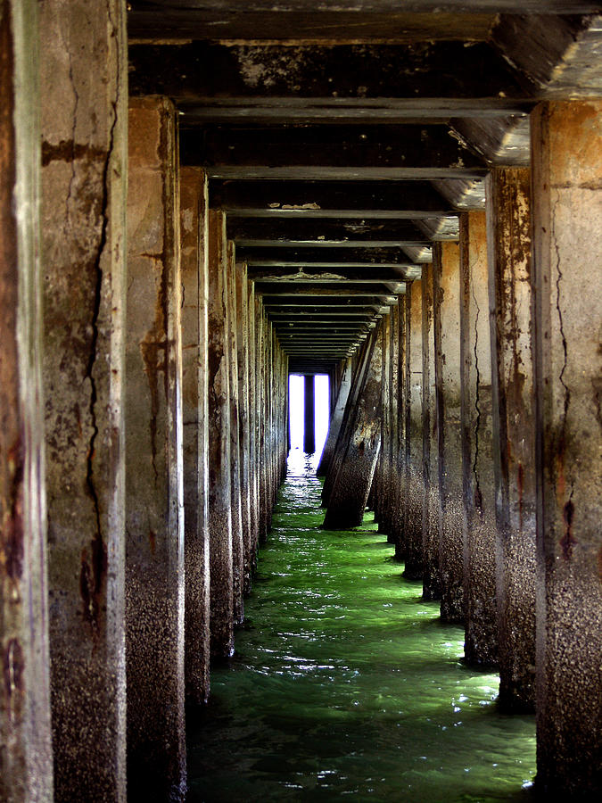 San Francisco Bay Photograph - Dock Of The Bay by Bill Gallagher
