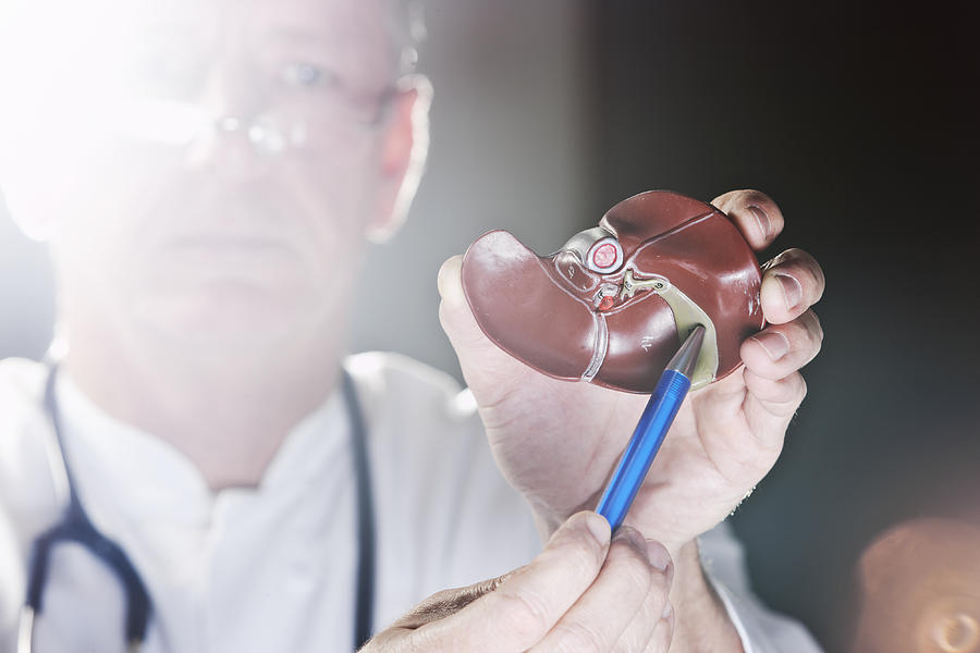 Doctor pointing at gall bladder Photograph by Jan-Otto