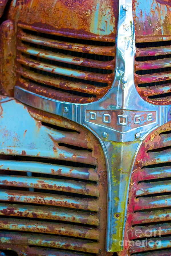 Dodge Vintage Truck  by Alanna DPhoto
