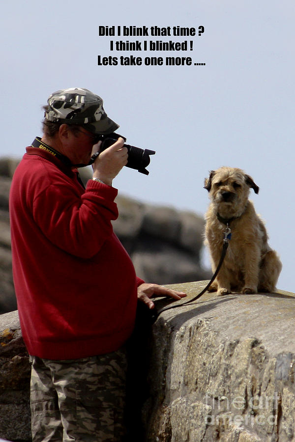 Photographer Photograph - Dog Being Photographed by Terri Waters