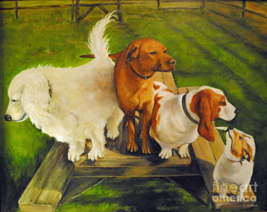 Dog Photograph - Dog Friends by Carolyn Shireman