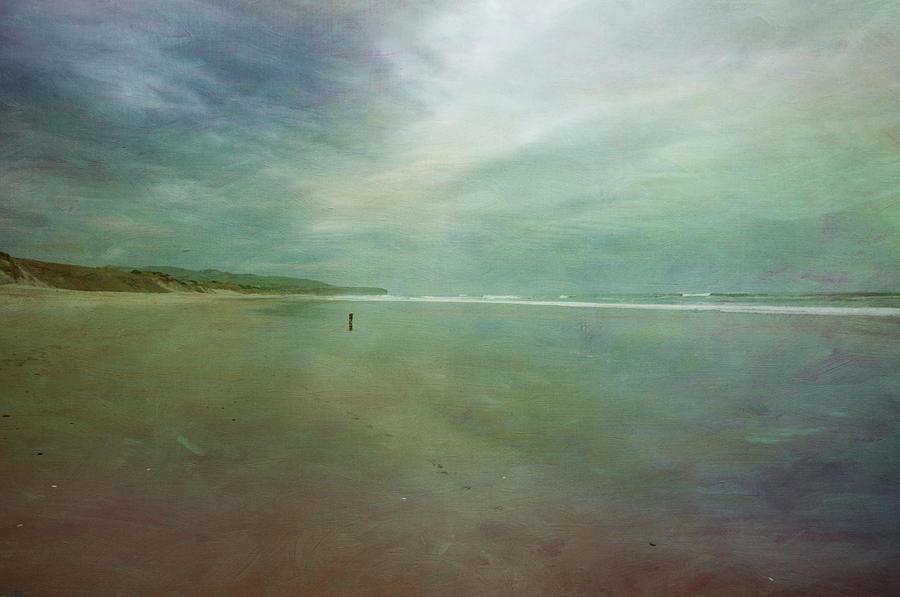 Dog On A Beach Photograph by Jill Ferry