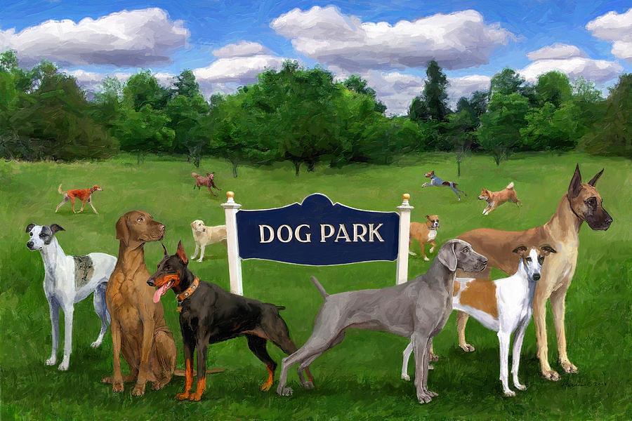 Dog Park Dimensions