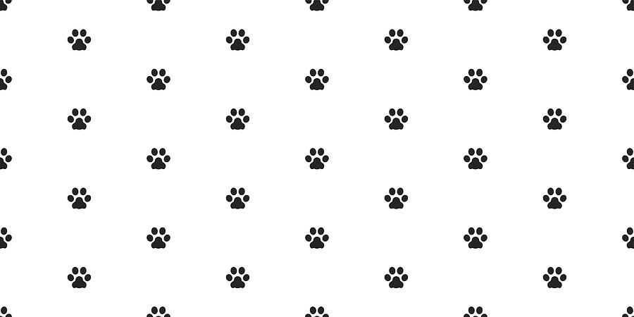 Drawing Dog Paws Max Installer