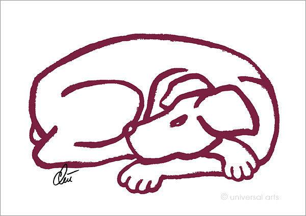 Mammals Digital Art - Dog Red by Jacqueline Ditt