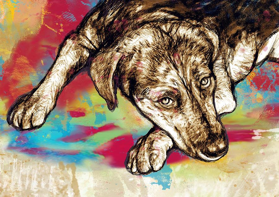 Dog Stylized Pop Modern Art Drawing Sketch Portrait ...