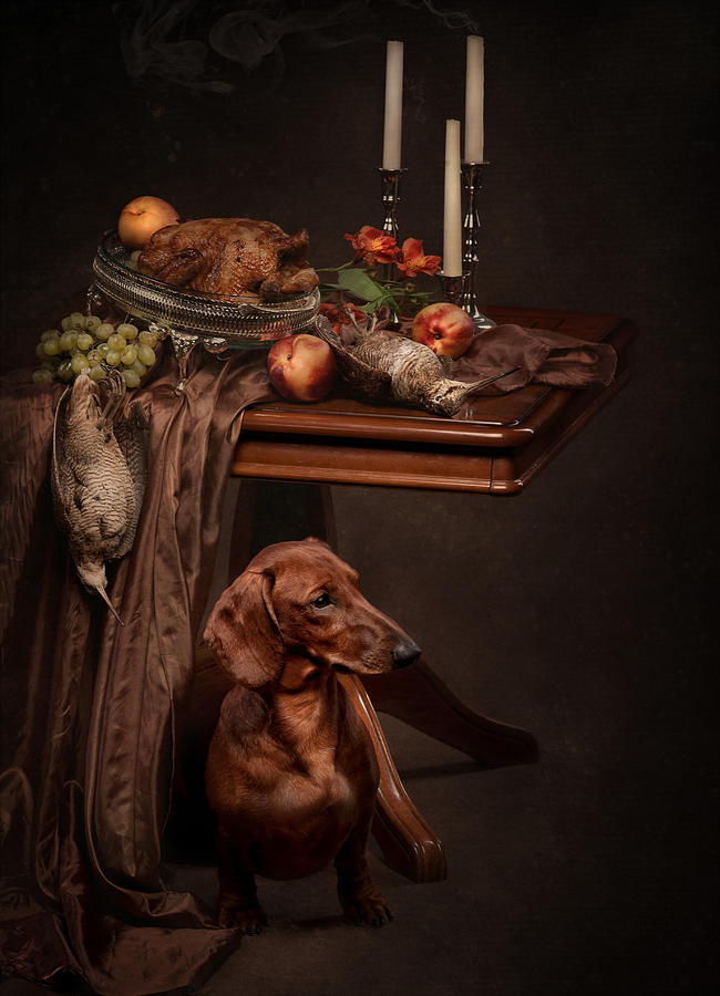 Still Life Photograph - Dog Under The Table by Tanya Kozlovsky