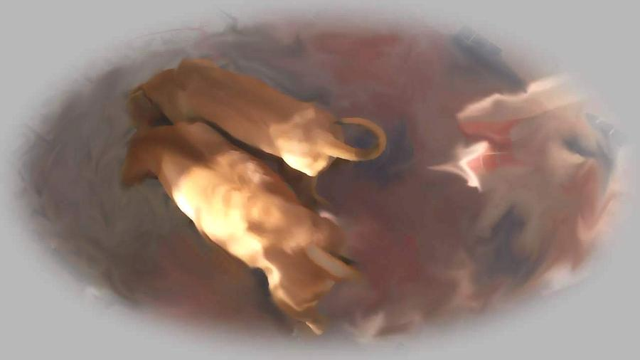 Brotherhood Digital Art - Doggie Brotherhood by Usha Shantharam