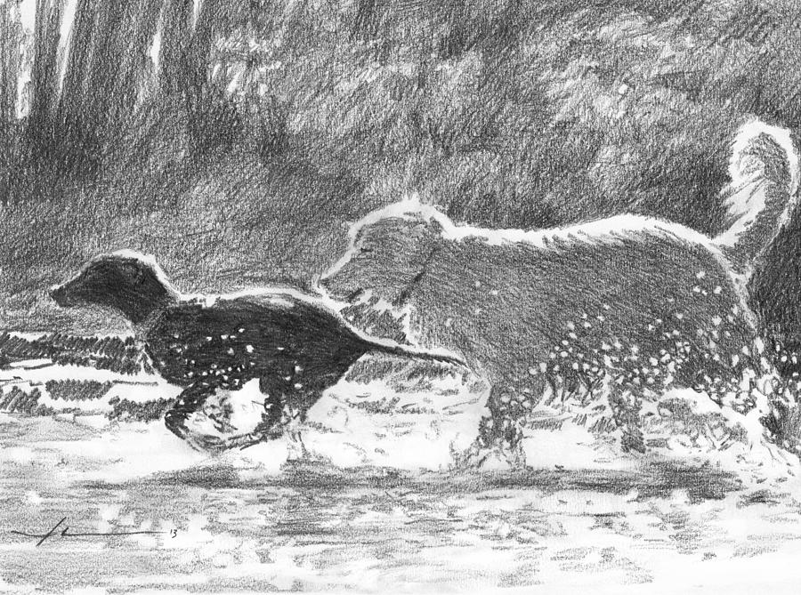 Dogs In A Stream Pencil Portrait Drawing by Mike Theuer