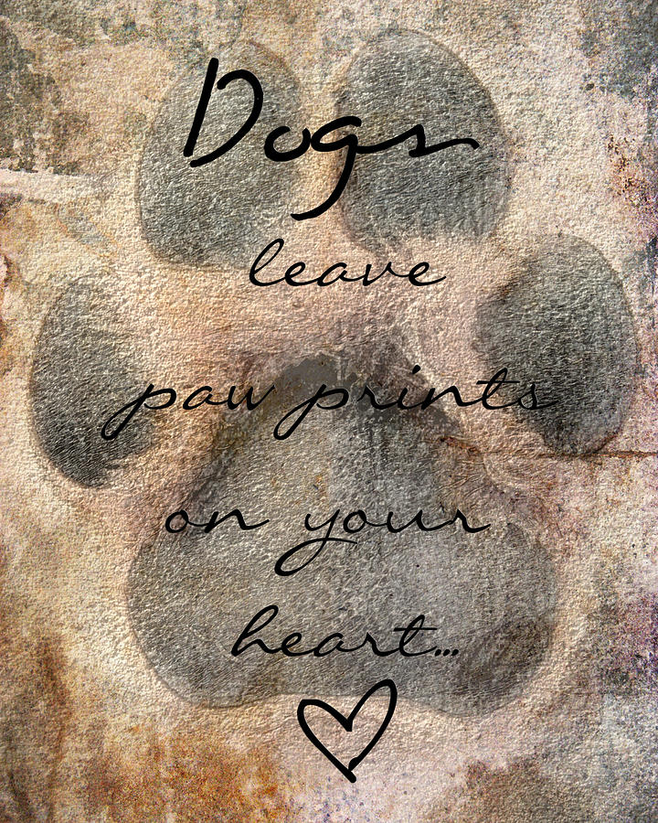 Dogs Leave Paw Prints On Your Heart Photograph - Dogs Leave Paw Prints On Your Heart by Brook Burling