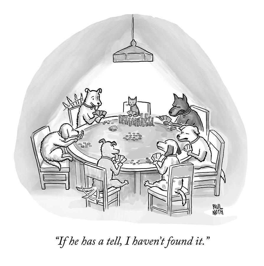 Dogs Playing Poker Refer Angrily To A Cat Who Drawing by Paul Noth