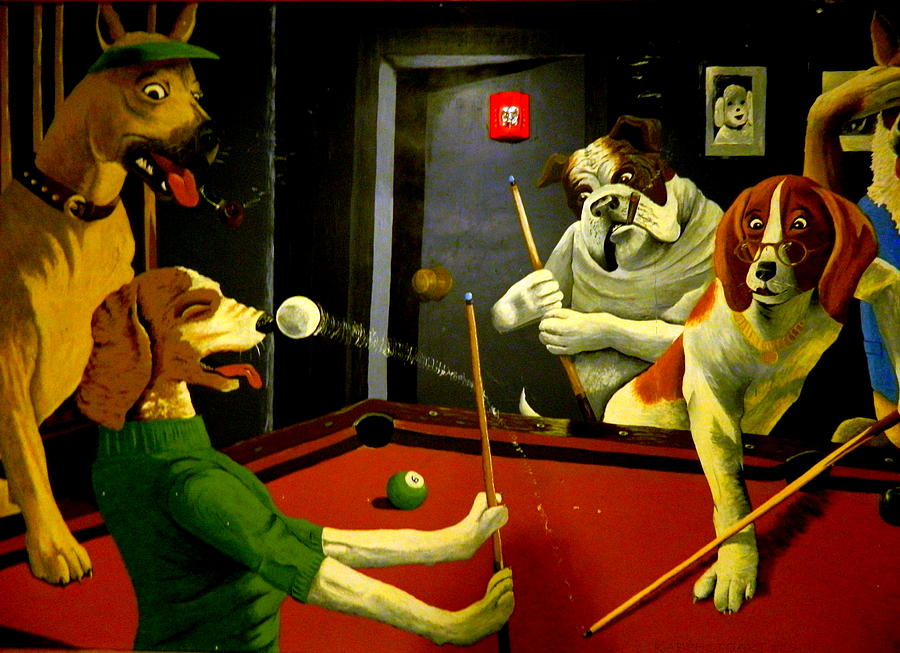 Image result for playing pool