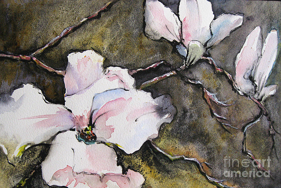 Watercolor Painting - Dogwood by Gwen Nichols