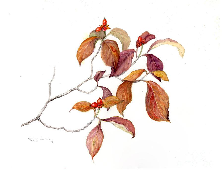 Dogwood in Fall by Fran Henig