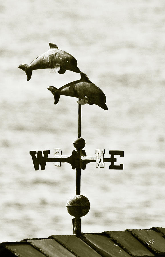 Dolphins Photograph - Dolphins Weathervane In Sepia by Ben and Raisa Gertsberg
