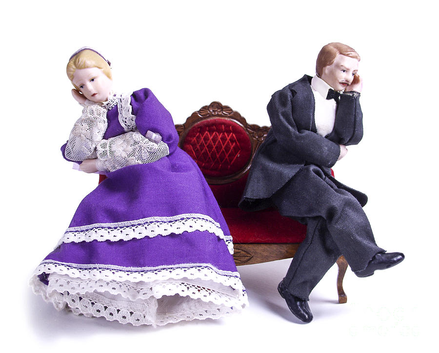 Dolls Photograph - Domestic Bliss by Diane Diederich