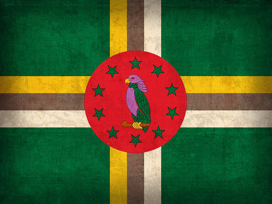 Dominica Mixed Media - Dominica Flag Vintage Distressed Finish by Design Turnpike