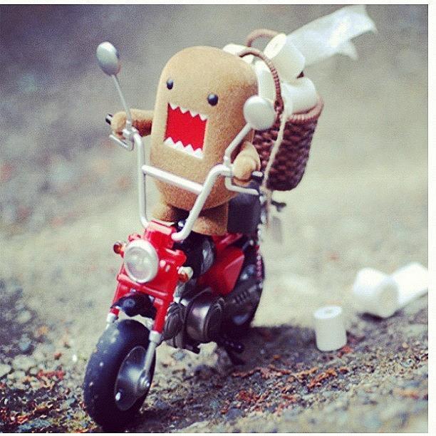 Toiletpaper Photograph - #domo #motorbike #toiletpaper Need I by Katie Ball