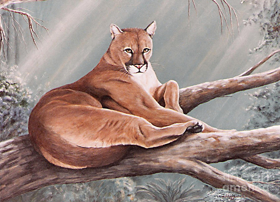 Big Cat Painting - Don Corlecougar by DiDi Higginbotham