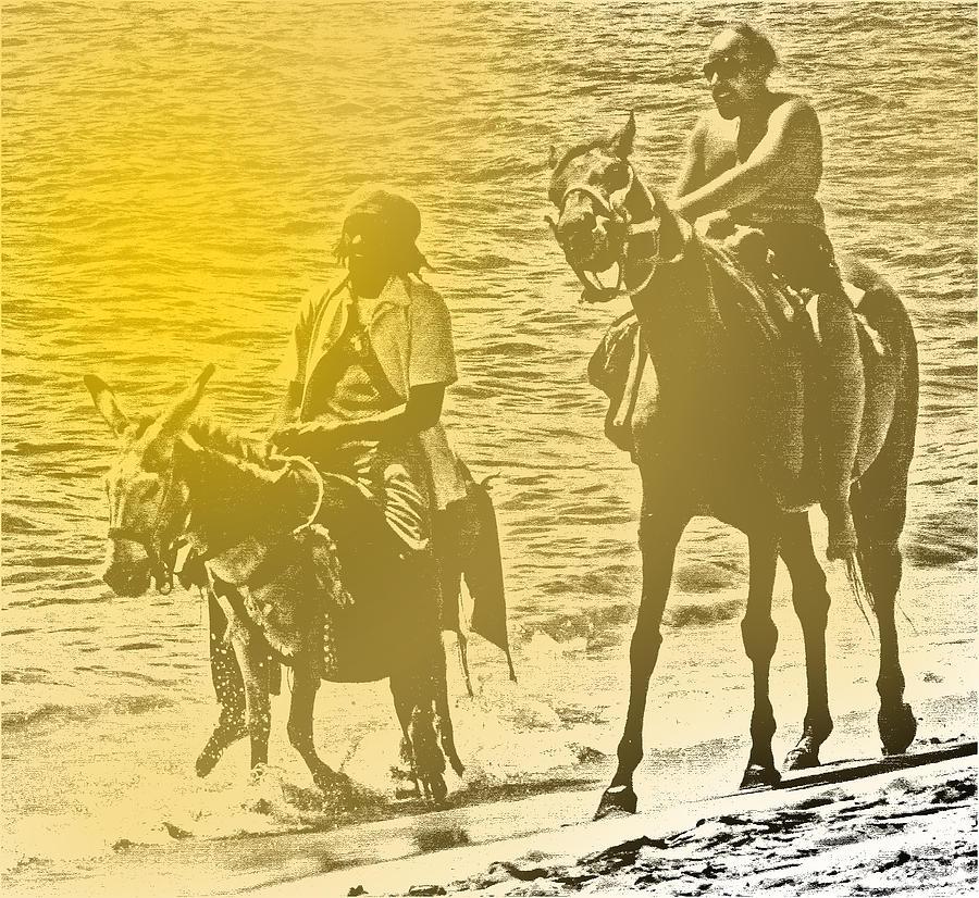 Donkey Photograph - Don Quixote Rides Again by Ian  MacDonald