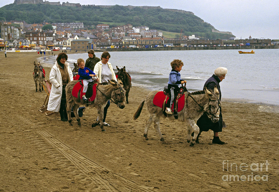 Donkey Photograph - Donkey Ride Gb 1980s by David Davies