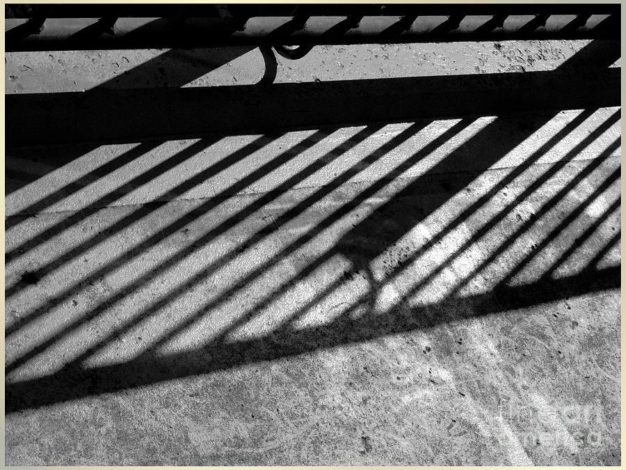 Don't fence me in by Luc Van de Steeg